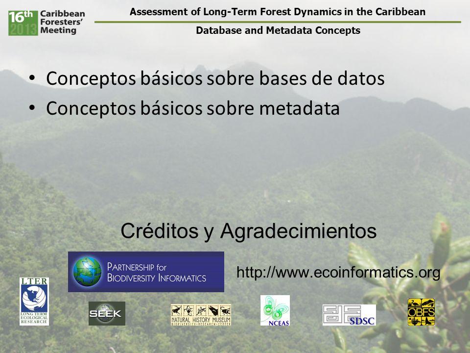 Assessment of Long-Term Forest Dynamics in the Caribbean Database and Metadata Concepts SitioPiscinaTrampaProfundidadEspecieReproTamaño A1124.2ATYAS15.1 A1212.3XIPHON22.3 A1233.0MACREN38.5 A2316.3ATYAS14.6 A2317.8ATYAS19.2 Datos Numéricos Integernums enteros200 Floatnums reales de precisión sencilla (hasta 23 lugares decimales) 3.1415926 Dobleprecisión doble (hasta 53 lugares decimales) 3.141592653589793 24532438531425934 35104756237812 Ejemplos de tipos de datos (dependen del programa en uso)