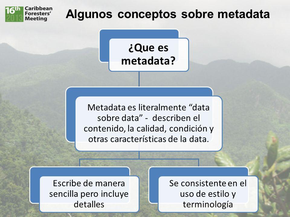 Algunos conceptos sobre metadata