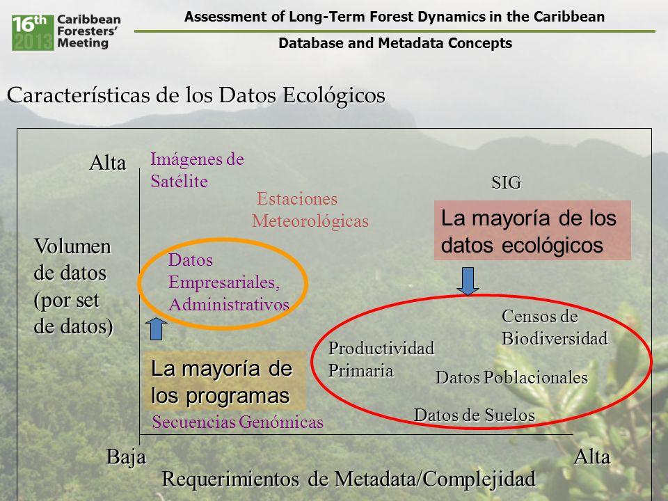 Assessment of Long-Term Forest Dynamics in the Caribbean Database and Metadata Concepts Programas de Spreadsheets (como Excel) Lo bueno – Son usados comúnmente – Son fácil de aprender – Por lo general están instalados en la mayoría de las computadoras Lo no tan bueno – Puede promover malos hábitos de uso, generando datos que no pueden ser usados fácilmente – No permiten análisis muy complejos – Es difícil auditarlos, es decir, ver como se ha cambiado o manipulado los datos – No facilitan la busqueda efectiva de un subconjunto de los datos