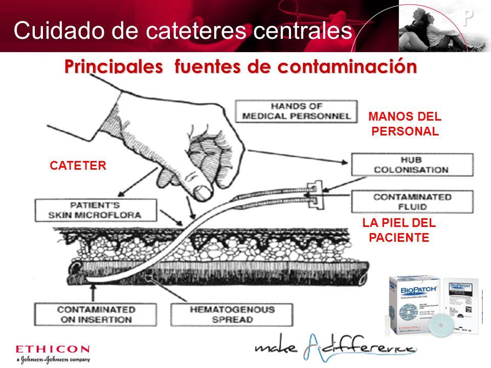 Principales fuentes de contaminación MANOS DEL PERSONAL CATETER LA PIEL DEL PACIENTE P Cuidado de cateteres centrales