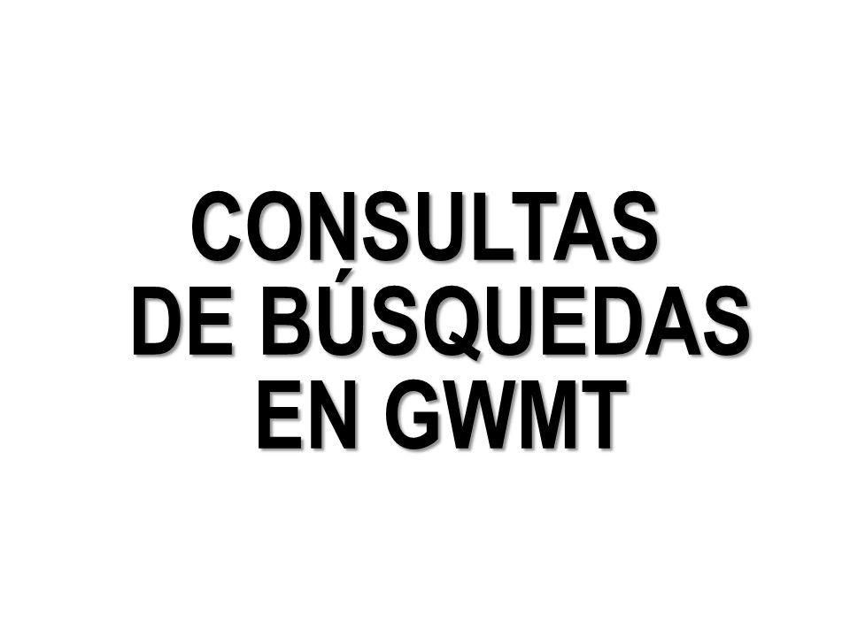 CONSULTAS DE BÚSQUEDAS EN GWMT