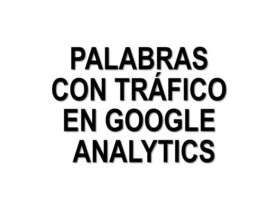 PALABRAS CON TRÁFICO EN GOOGLE ANALYTICS