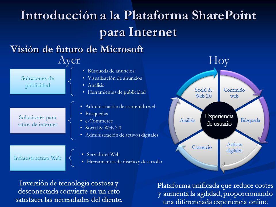 Contenido web Búsqueda Activos digitales Comercio Análisis Social & Web 2.0 Visión de futuro de Microsoft Soluciones de publicidad Infraestructura Web