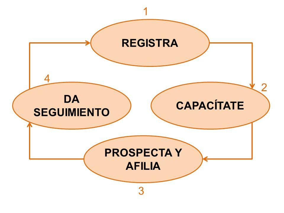 DA SEGUIMIENTO 1 CAPACÍTATE 2 3 4 PROSPECTA Y AFILIA REGISTRA