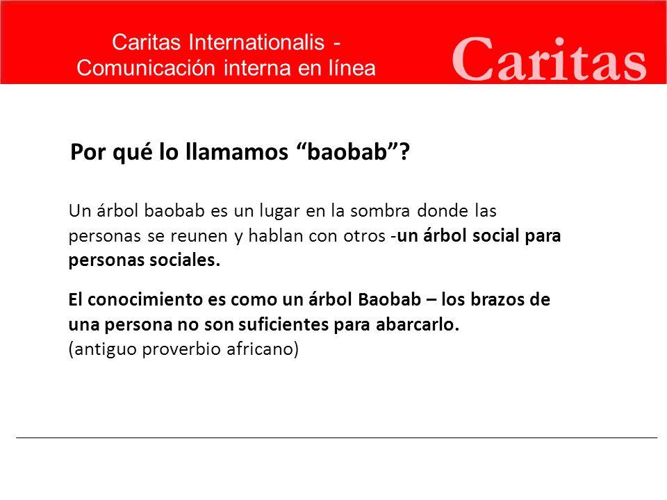Caritas Qué es un Extranet.