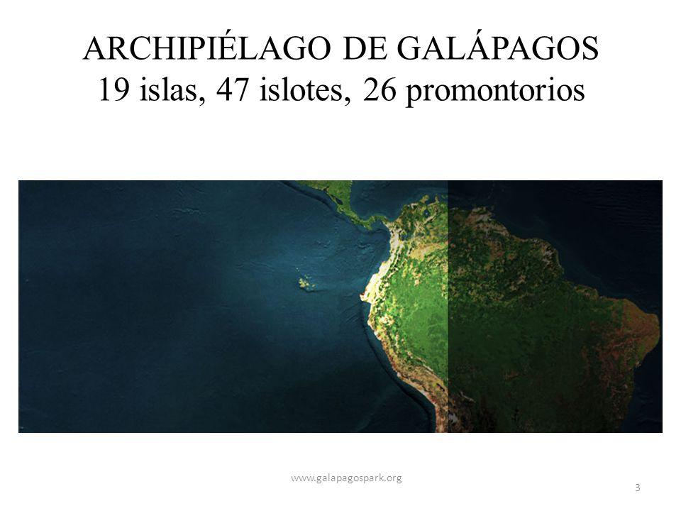 ARCHIPIÉLAGO DE GALÁPAGOS 19 islas, 47 islotes, 26 promontorios www.galapagospark.org 3