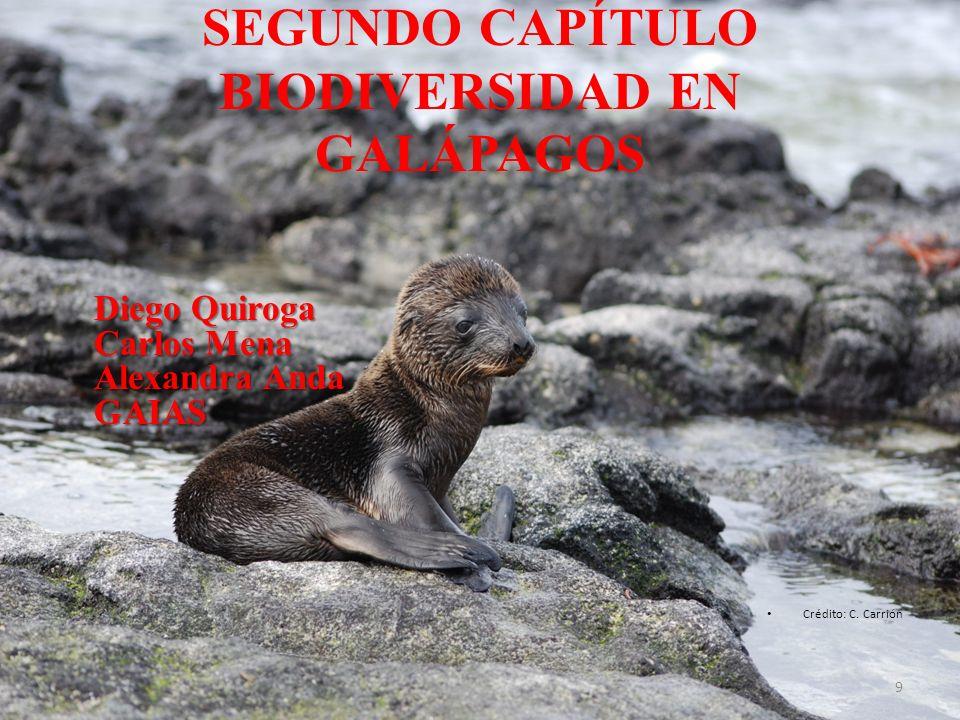 SEGUNDO CAPÍTULO BIODIVERSIDAD EN GALÁPAGOS Diego Quiroga Carlos Mena Alexandra Anda GAIAS Crédito: C. Carrión 9