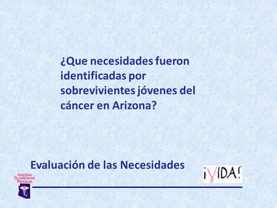 ¿Que necesidades fueron identificadas por sobrevivientes jóvenes del cáncer en Arizona.