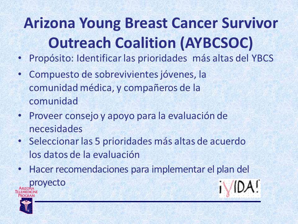 Arizona Young Breast Cancer Survivor Outreach Coalition (AYBCSOC) Propósito: Identificar las prioridades más altas del YBCS Compuesto de sobrevivientes jóvenes, la comunidad médica, y compañeros de la comunidad Proveer consejo y apoyo para la evaluación de necesidades Seleccionar las 5 prioridades más altas de acuerdo los datos de la evaluación Hacer recomendaciones para implementar el plan del proyecto