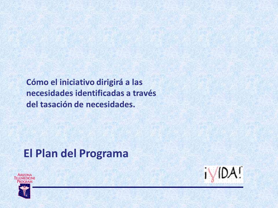 Cómo el iniciativo dirigirá a las necesidades identificadas a través del tasación de necesidades.