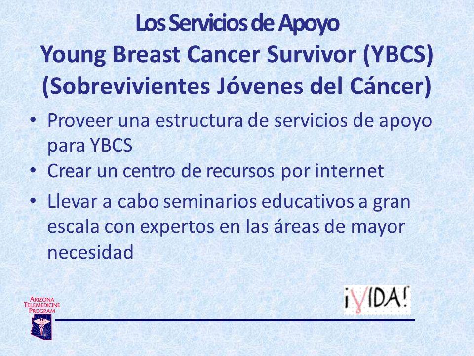 Los Servicios de Apoyo Young Breast Cancer Survivor (YBCS) (Sobrevivientes Jóvenes del Cáncer) Proveer una estructura de servicios de apoyo para YBCS Crear un centro de recursos por internet Llevar a cabo seminarios educativos a gran escala con expertos en las áreas de mayor necesidad