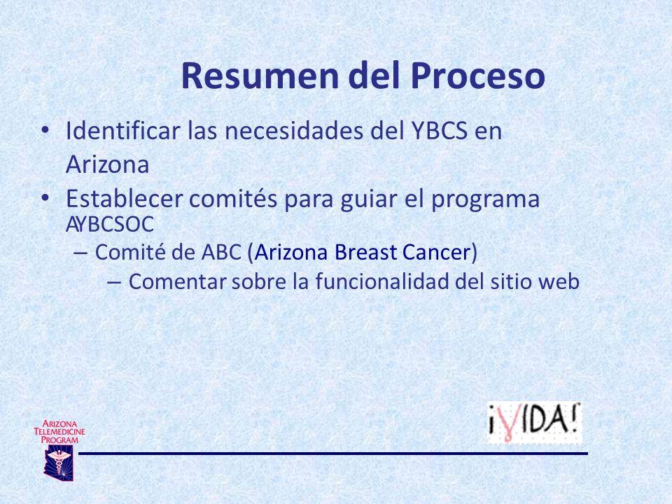 Resumen del Proceso Identificar las necesidades del YBCS en Arizona Establecer comités para guiar el programa AYBCSOC – Comité de ABC (Arizona Breast Cancer) – Comentar sobre la funcionalidad del sitio web