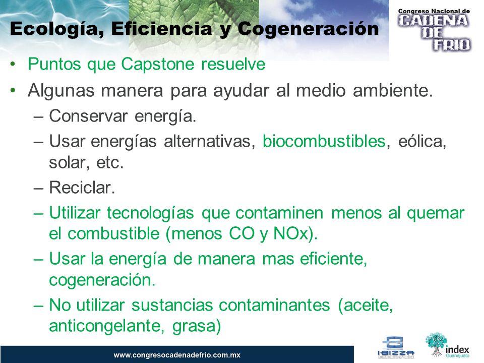 Puntos que Capstone resuelve Algunas manera para ayudar al medio ambiente. –Conservar energía. –Usar energías alternativas, biocombustibles, eólica, s