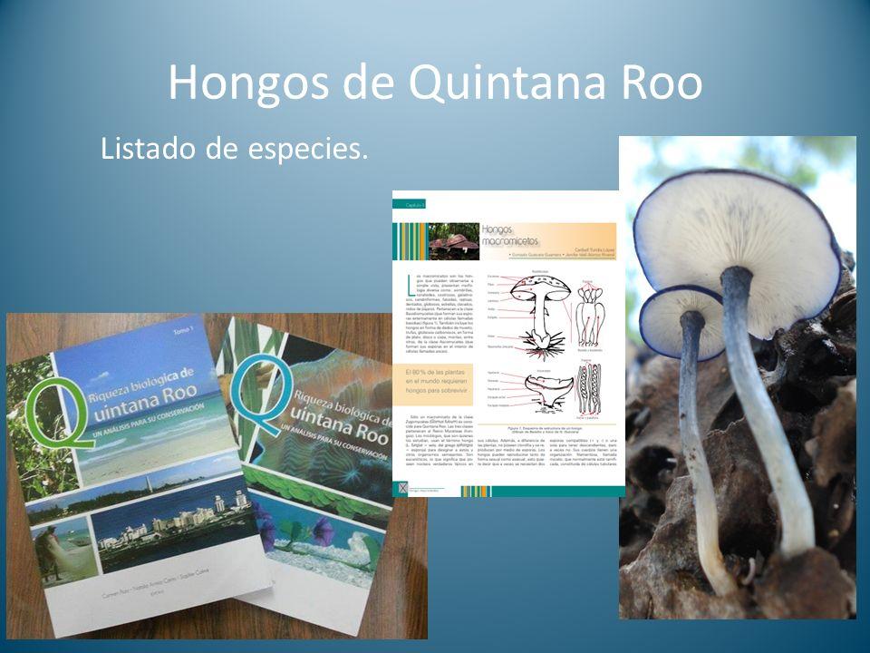 Hongos de Quintana Roo Listado de especies.