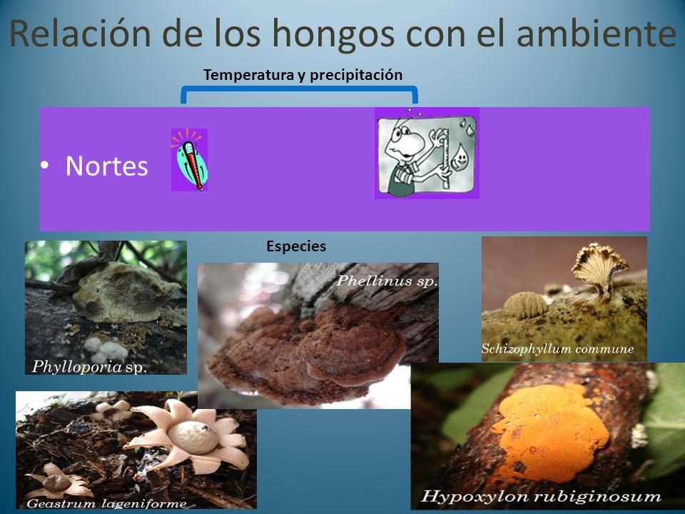 Relación de los hongos con el ambiente Nortes Especies Temperatura y precipitación