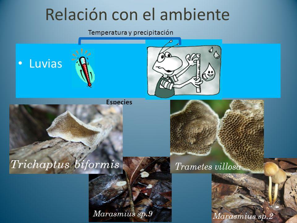 Relación con el ambiente Luvias Especies Temperatura y precipitación