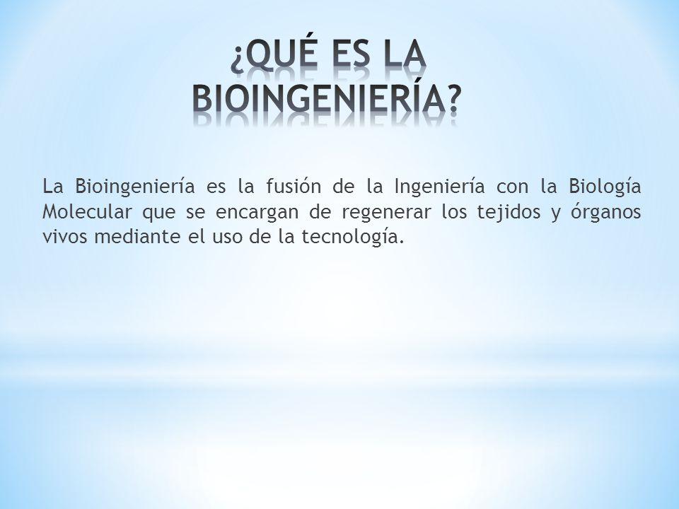 La Bioingeniería es la fusión de la Ingeniería con la Biología Molecular que se encargan de regenerar los tejidos y órganos vivos mediante el uso de l