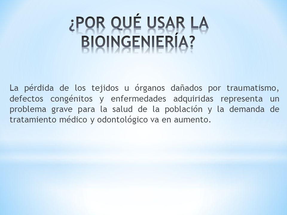 Si en esta fase extrajéramos artificialmente las células de su Masa Celular Interna y las cultiváramos, nunca daría lugar a un embrión completo sino a estirpes celulares determinados por los genes que estén expresados.