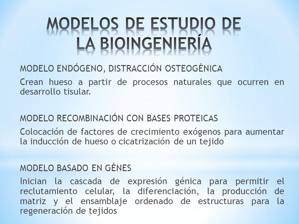 MODELO CONDUCTIVO Utilización de materiales de manera pasiva como las membranas para guiar la regeneración tisular.