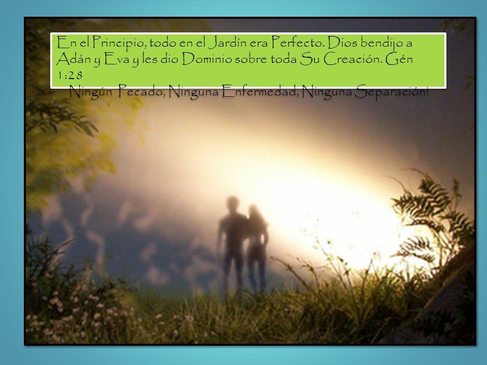 En el Principio, todo en el Jardín era Perfecto. Dios bendijo a Adán y Eva y les dio Dominio sobre toda Su Creación. Gén 1:28 Ningún Pecado, Ninguna E