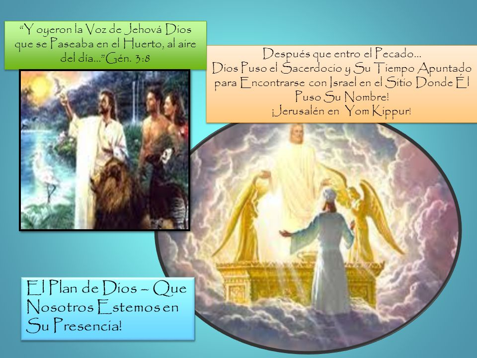 Después que entro el Pecado… Dios Puso el Sacerdocio y Su Tiempo Apuntado para Encontrarse con Israel en el Sitio Donde Él Puso Su Nombre! ¡Jerusalén
