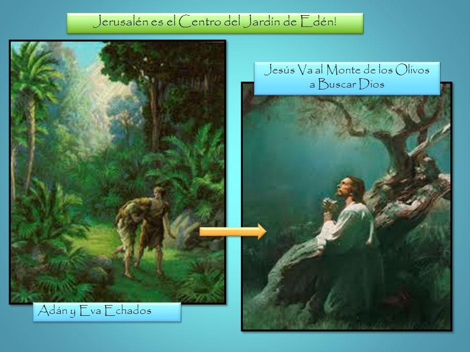 Jerusalén es el Centro del Jardín de Edén! Adán y Eva Echados Jesús Va al Monte de los Olivos a Buscar Dios Jesús Va al Monte de los Olivos a Buscar D