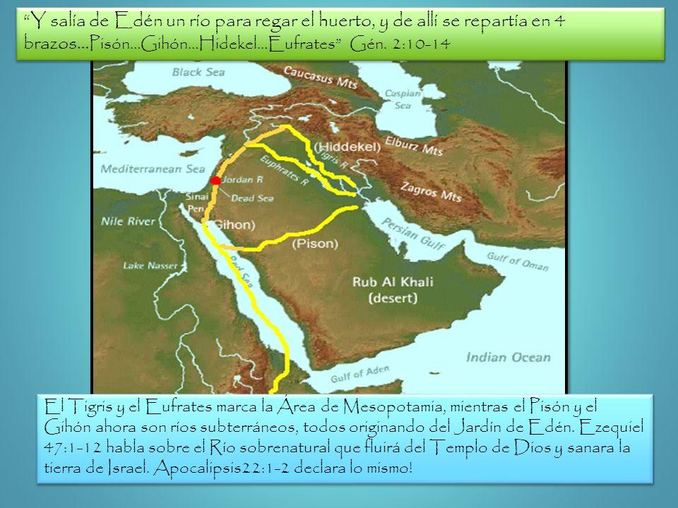 Y salía de Edén un río para regar el huerto, y de allí se repartía en 4 brazos… Pisón…Gihón…Hidekel…Eufrates Gén. 2:10-14 El Tigris y el Eufrates marc