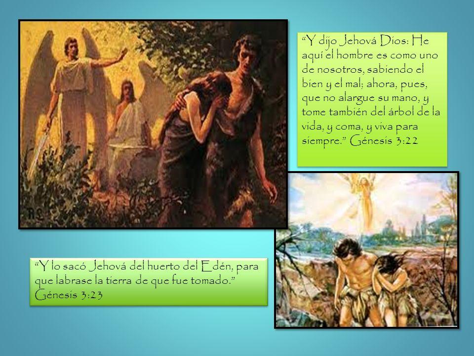 Y dijo Jehová Dios: He aquí el hombre es como uno de nosotros, sabiendo el bien y el mal; ahora, pues, que no alargue su mano, y tome también del árbo