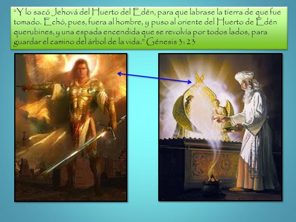 Y lo sacó Jehová del Huerto del Edén, para que labrase la tierra de que fue tomado. Echó, pues, fuera al hombre, y puso al oriente del Huerto de Edén