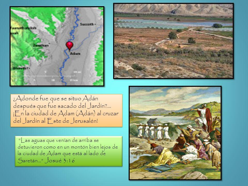 Las aguas que venían de arriba se detuvieron como en un montón bien lejos de la ciudad de Adam que está al lado de Saretán… Josué 3:16 ¿Adonde fue que
