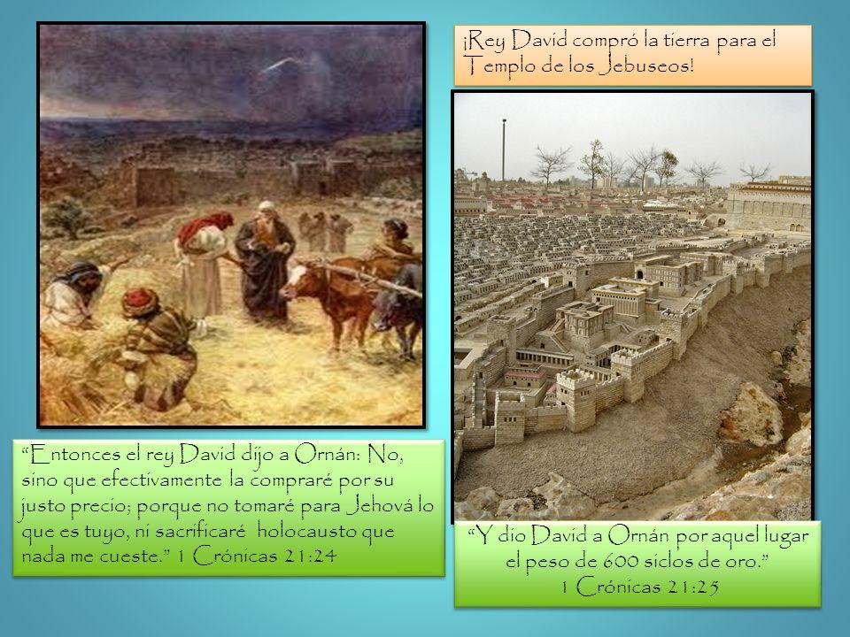 Entonces el rey David dijo a Ornán: No, sino que efectivamente la compraré por su justo precio; porque no tomaré para Jehová lo que es tuyo, ni sacrif