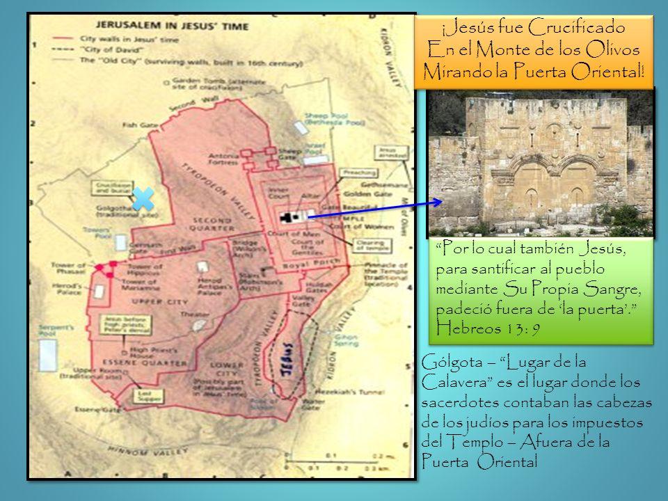 ¡Jesús fue Crucificado En el Monte de los Olivos Mirando la Puerta Oriental! ¡Jesús fue Crucificado En el Monte de los Olivos Mirando la Puerta Orient