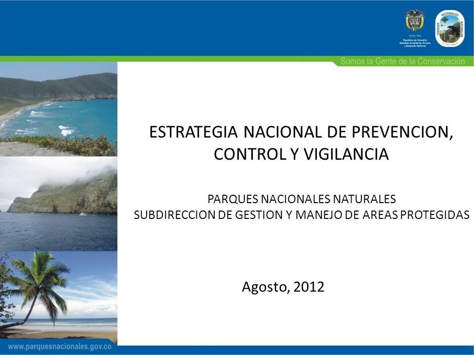 ESTRATEGIA NACIONAL DE PREVENCION, CONTROL Y VIGILANCIA PARQUES NACIONALES NATURALES SUBDIRECCION DE GESTION Y MANEJO DE AREAS PROTEGIDAS Agosto, 2012
