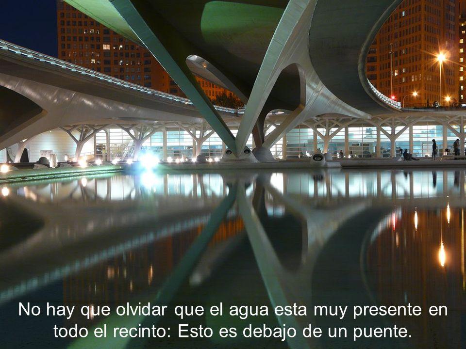 No hay que olvidar que el agua esta muy presente en todo el recinto: Esto es debajo de un puente.