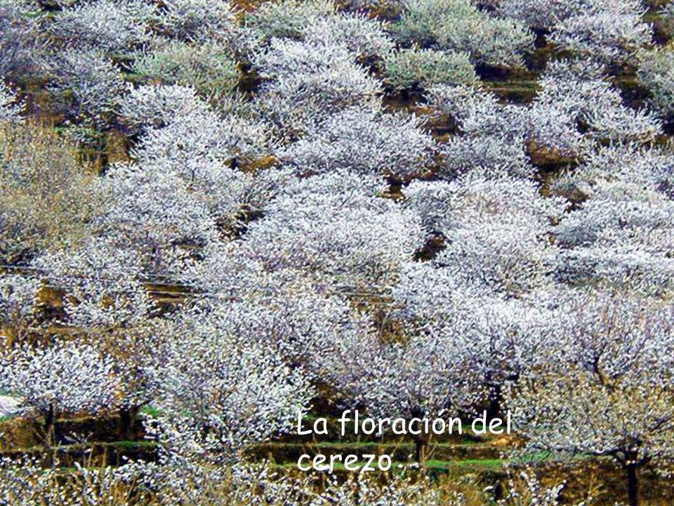 Valle del Ambroz (Cáceres) Las sierras del norte de Extremadura te sorprenderán en cualquier estación del año