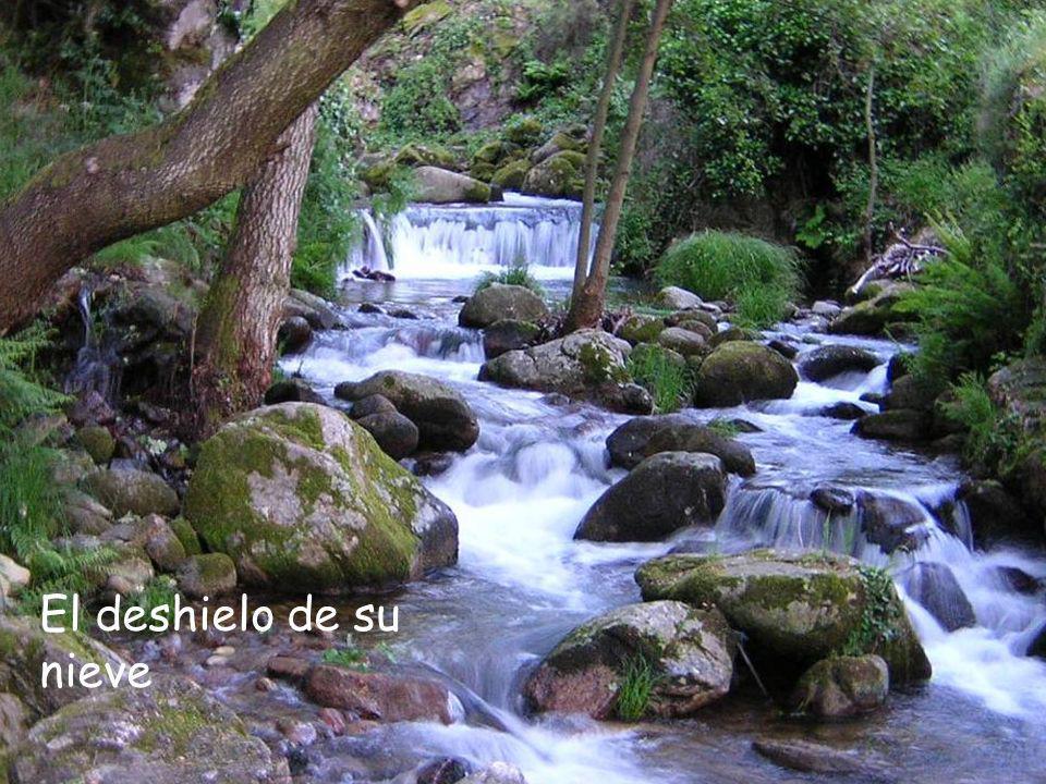 Valle del Ambroz (Cáceres) Y la del castaño con su agradable aroma