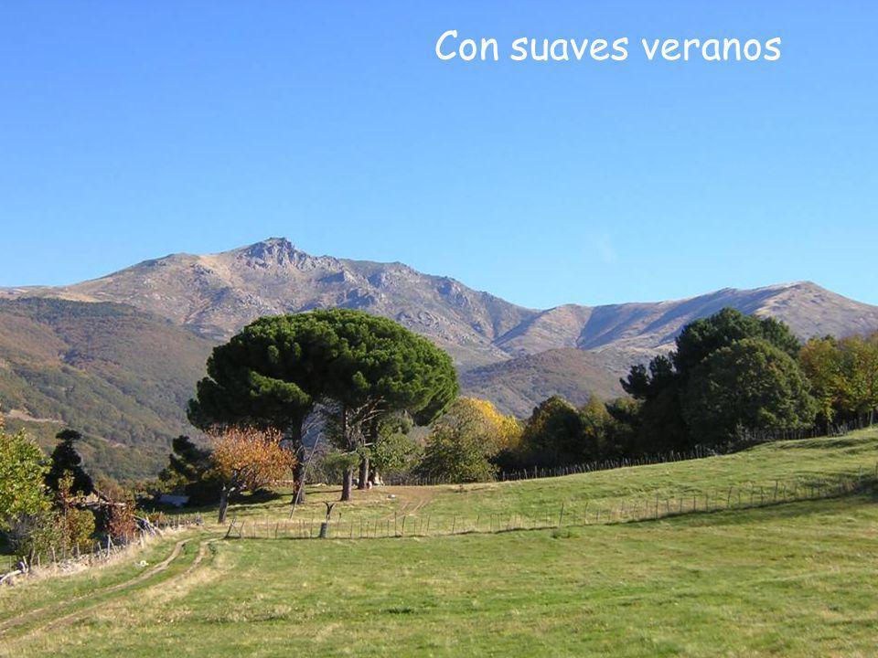 Valle del Ambroz (Cáceres) Pico Pinajarro 2.104 metros