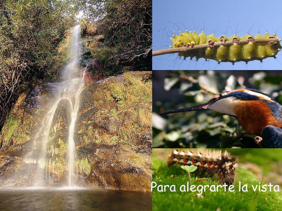 Valle del Ambroz (Cáceres) Parajes encantadores