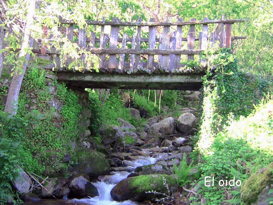 Valle del Ambroz (Cáceres) Para alegrarte la vista