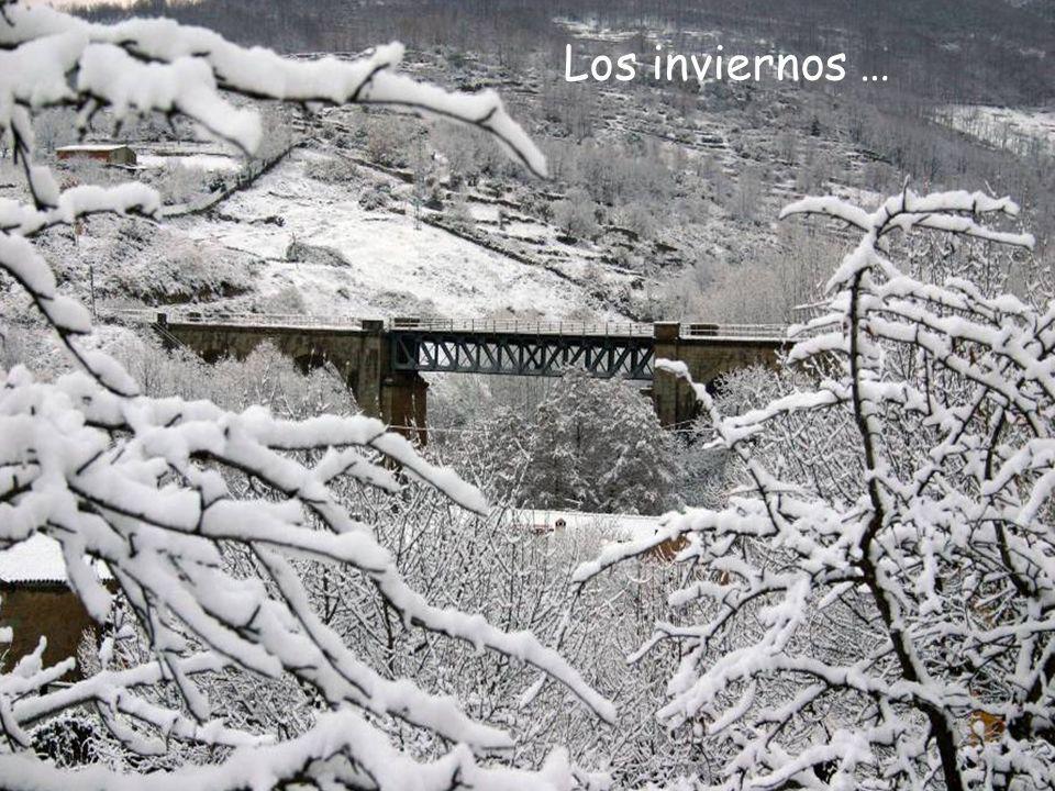 Valle del Ambroz (Cáceres) Sus productos naturales y ecológicos