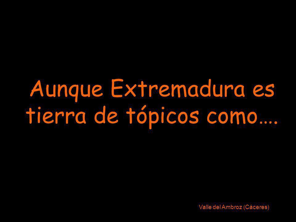 Aunque Extremadura es tierra de tópicos como….