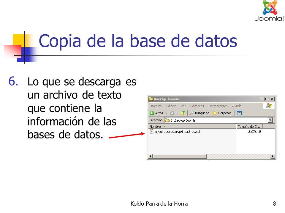 Koldo Parra de la Horra9 Copia de la base de datos 7.