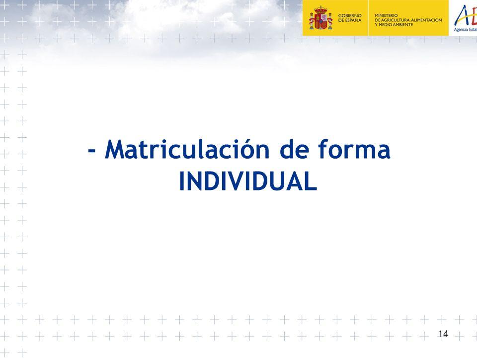 14 - Matriculación de forma INDIVIDUAL