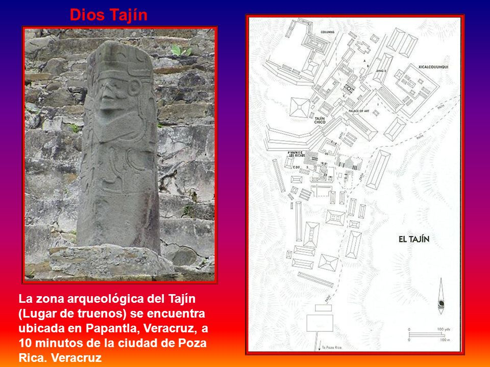 El sitio arqueológico El Tajín Ubicado en el estado de Veracruz, El Tajín es uno de los muchos sitios arqueológicos importantes de México. La mayor pa