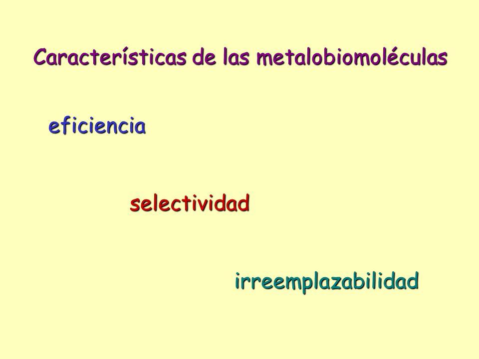 Características de las metalobiomoléculas eficiencia selectividad irreemplazabilidad