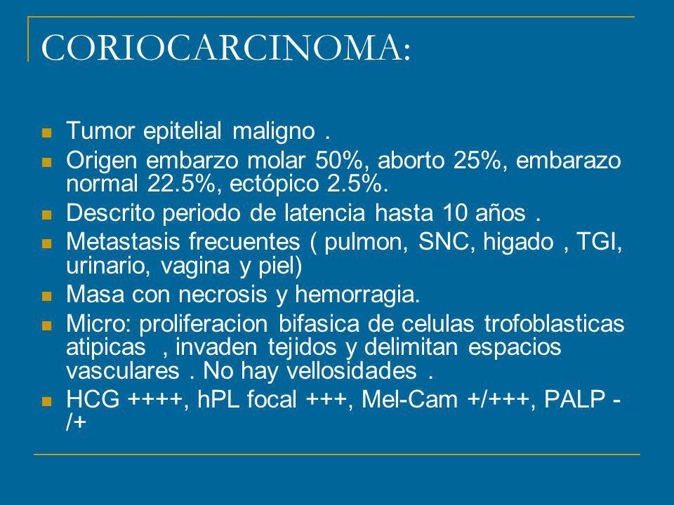 CORIOCARCINOMA: Tumor epitelial maligno. Origen embarzo molar 50%, aborto 25%, embarazo normal 22.5%, ectópico 2.5%. Descrito periodo de latencia hast