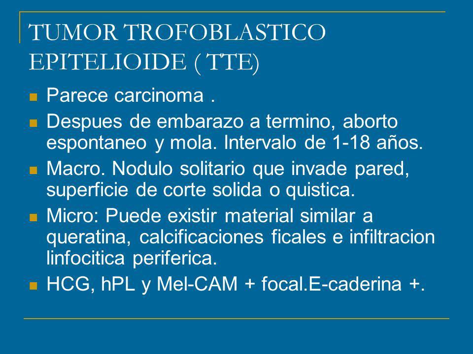 TUMOR TROFOBLASTICO EPITELIOIDE ( TTE) Parece carcinoma. Despues de embarazo a termino, aborto espontaneo y mola. Intervalo de 1-18 años. Macro. Nodul