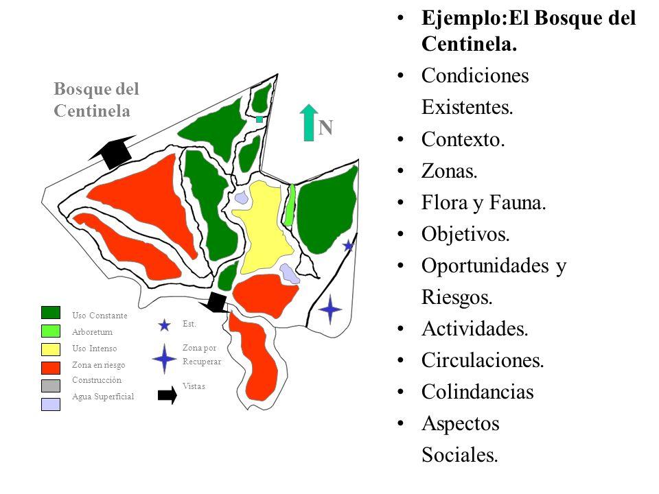 Ejemplo:El Bosque del Centinela. Condiciones Existentes. Contexto. Zonas. Flora y Fauna. Objetivos. Oportunidades y Riesgos. Actividades. Circulacione