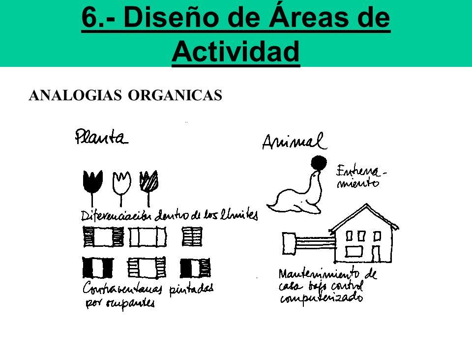 6.- Diseño de Áreas de Actividad ANALOGIAS ORGANICAS