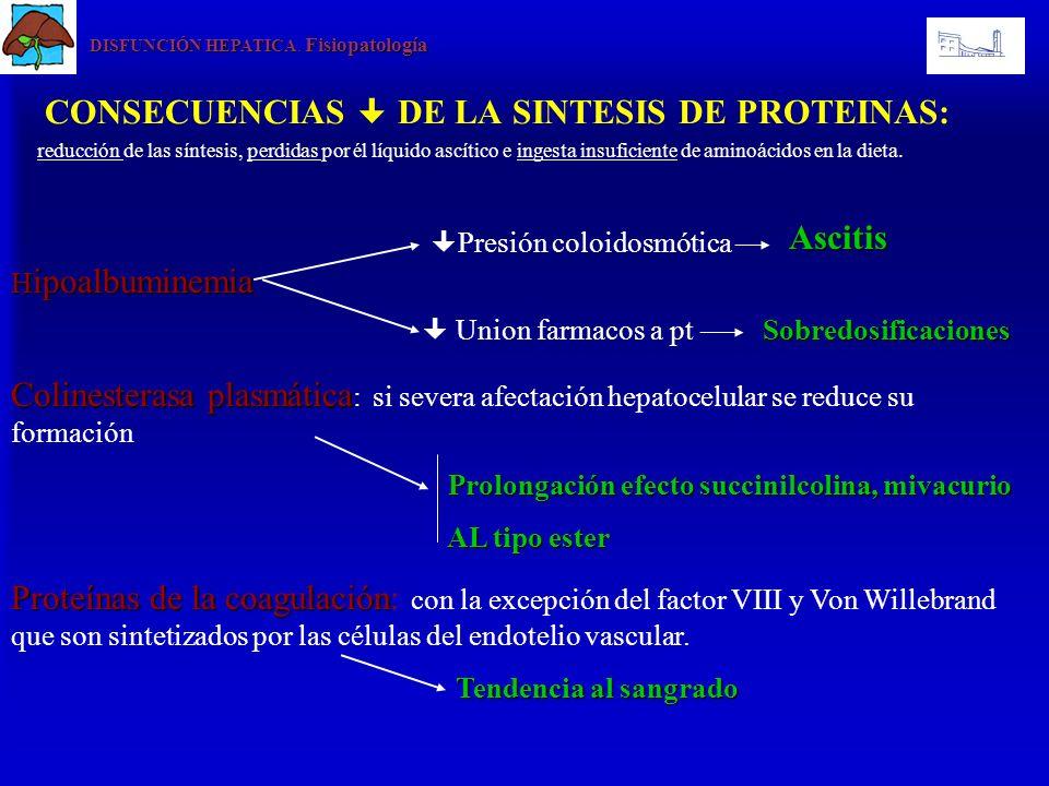 CONSECUENCIAS DE LA SINTESIS DE PROTEINAS: reducción de las síntesis, perdidas por él líquido ascítico e ingesta insuficiente de aminoácidos en la die